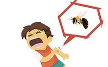 Trẻ bị ong đốt, phải làm gì?