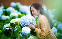 5 kinh nghiệm chụp hoa ở Đà Lạt