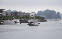 Tạm dừng hoạt động ba tàu du lịch trên vịnh Hạ Long
