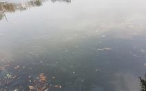Hà Nội chi tiền làm sạch hồ, có giữ được hồ sạch?
