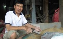 Chủ nhà máy xay muốn giao vàng trong bao lúa cho chính quyền