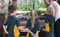 Đưa cá sấu to vào trường cho học sinh nhận biết trực quan