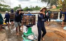Xuất khẩu cá tra sang Trung Quốc tăng nóng