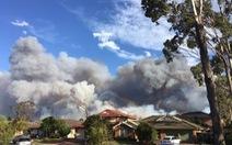 Cháy dữ dội hơn 25.000 ha rừng ở Úc