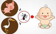 Viêm não Nhật Bản thường gây tử vong cao