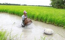 Nông nghiệp 4.0 giúp giảm tác động biến đổi khí hậu