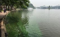 Hà Nội thả tảo lục trở lại hồ Hoàn Kiếm