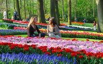 Đến thăm 'Thiên đường hoa' Keukenhof ở Hà Lan