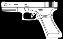 Dùng súng tự chế bắn bố đẻ trọng thương