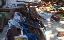 Quảng Nam bắt xe tải chở 2 tấn gỗ trắc không rõ nguồn gốc