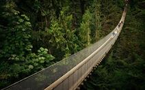 10 cây cầu treo khách vừa ngắm cảnh vừa run chân