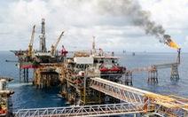 Mỏ dầu Bạch Hổ - chuyện giờ mới kể