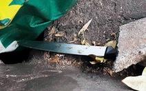 Nghi can tước dao giết người sau va quẹt xe ở Sài Gòn đầu thú