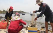 Dân Quảng Ngãi chất vấn dự án FLC mang lợi gì cho dân?