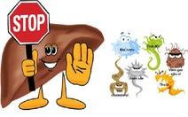 Men gan cao: nguyên nhân và cách phòng tránh