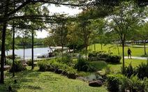 Green Star Sky Garden: Công thức cho cuộc sống trọn vẹn