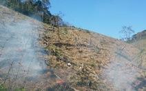 Để mất rừng liên tục, ban thường vụ huyện ủy Đắk G'long bị khiển trách