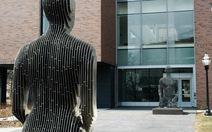 Những bức tượng tàng hình độc nhất vô nhị