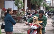 Dân truy đuổi 'cẩu tặc' bằng xe phân khối lớn, giải cứu 7 con chó