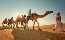 Những điều kỳ thú ở Abu Dhabi