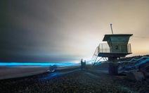 Đi canh 'sóng biển ma quái' phát sáng trong đêm
