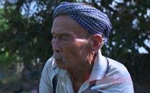 Phim 'Như hạt phù sa', 'Bảy Cồ Đồng Tháp' đoạt giải cao