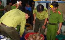 Quảng Nam phá đường dây buôn bán động vật hoang dã