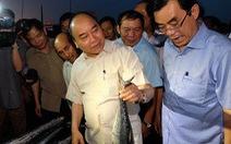 Thủ tướng Nguyễn Xuân Phúc mua cá của ngư dân Quảng Trị
