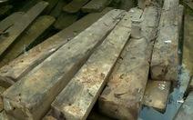 Khiển trách Phó chủ tịch huyện vì để mất rừng hàng loạt