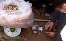 Bình Định bắt vụ vận chuyển, tàng trữ gần 20kg thuốc nổ