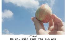 Bộ ảnh 'thả thính' bằng trái cây của cô gái Sài Gòn