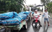 Khoai môn còn 7.000 đồng/kg do Trung Quốc giảm mua