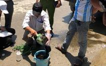 'Đoạn kênh nhớt thải' tại Đà Nẵng là do xe bồn đổ trộm