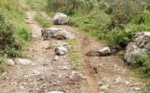 Vào rẫy tìm bò, hai mẹ con cô giáo ở Nghệ An bị đá đè chết