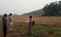 1.350ha đất bỏ hoang vì dự án bò sữa 3.800 tỉ đồng dang dở