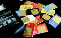Dùng 30 sim nhắn tin vu khống, bị phạt 12 tháng tù