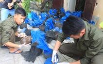 Bắt giữ xe tải chở 74 con tê tê, gửi sang rừng Cúc Phương