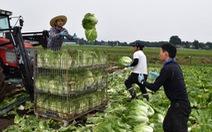 Nhật Bản nới lỏng chính sách visa cho lao động nước ngoài