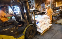 Giá phân bón tăng 'vọt' 83%, nông dân sao chịu nổi?