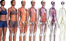 Cơ thể người có giá vài chục tỉ trên chợ đen
