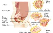 Dấu hiệu của viêm đường tiết niệu
