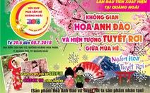 """Ngắm """"Lễ hội Hoa Anh Đào và Tuyết rơi"""" lần đầu tại Quảng Ngãi"""