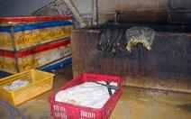 Bắt quả tang cơ sở ngâm hóa chất tẩy trắng hàng trăm ký nội tạng bò