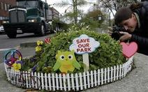 Công viên nhỏ nhất thế giới bé bằng một chậu hoa