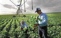 Bayer hoàn tất thương vụ sáp nhập lịch sử trong ngành nông nghiệp toàn cầu
