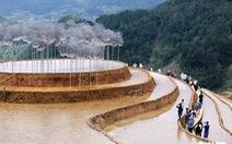 Mây pha lê: Phép thử với công chúng Việt Nam