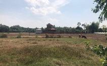 Giá đất nông nghiệp Long An giảm sau cơn sốt