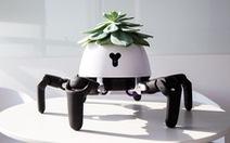 Robot trồng cây có thể tự di chuyển về phía ánh sáng