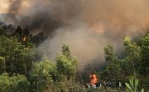 Dập tắt cháy rừng thông ở Thanh Hóa, gần 10ha rừng bị thiêu rụi
