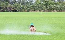 Cả trăm ngàn tấn thuốc bảo vệ thực vật đổ xuống ruộng đồng mỗi năm